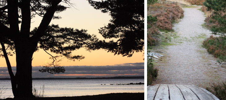 Collage - picture of a sunset, overlooking the sea, and a path leading to the forest.